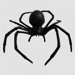 Black Spider Big