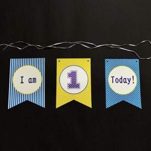 1st Birthday Happy Birthday Banner - Model 1001