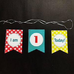 1st Birthday Happy Birthday Banner - Model 1003