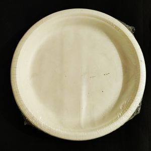 High Quality White Paper Plates - Set of 25