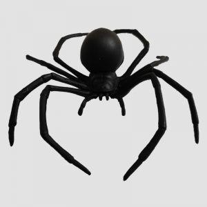 Black Spider Big