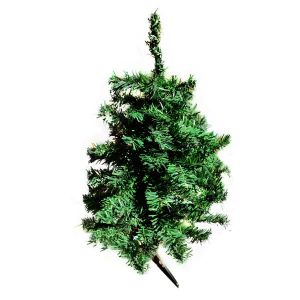 Christmas Tree Taiwan Dense Tree - 2 FT